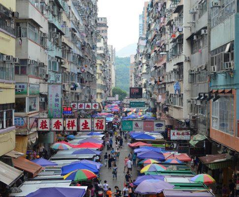 Jungles of Hong Kong